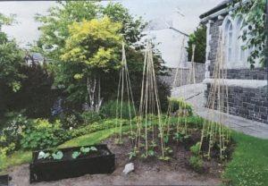 St Ninian's vegetable garden