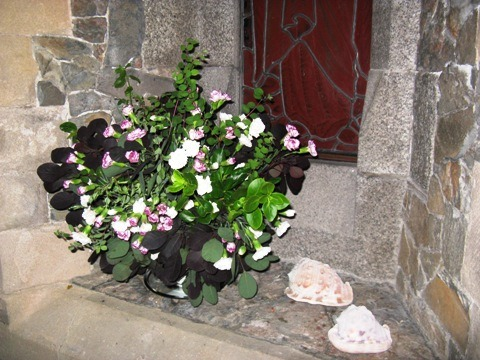 Other floral displays